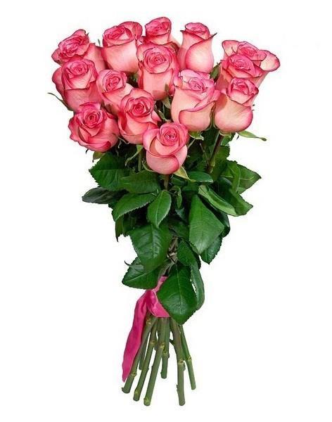 Купить цветы в талгаре цветы в астане с доставкой